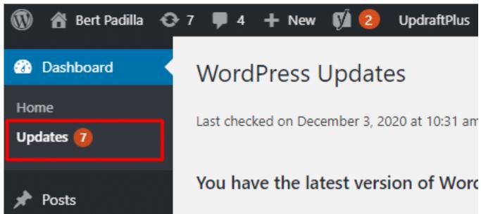 Updating WordPress Plugins and Themes